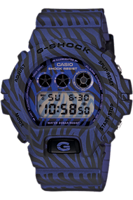 Casio G-Shock DW6900ZB-2
