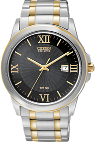 Citizen basic watch
