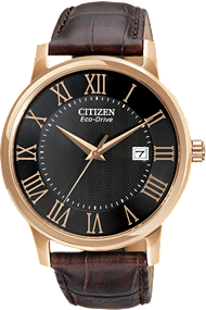 Citizen Straps Watch