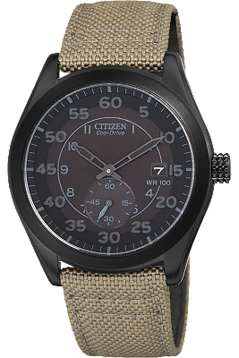 BV1085-31E | Citizen at Tourneau