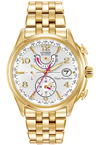 Citizen Eco-Drive World Time A-T FC0002-53A