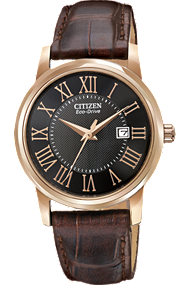 Citizen women's straps watch