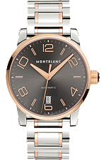 Montblanc TimeWalker Automatic Steel Gold | 106501