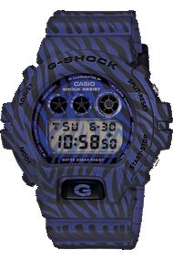Casio G-Shock DW6900ZB-2