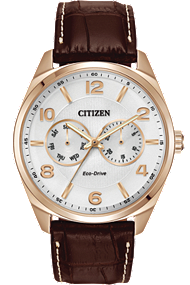 Citizen | Men's Dress | AO9023-01A