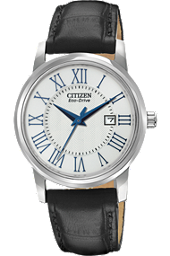 Citizen watch - Straps